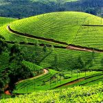 Munnar-hill-station-in-india, Best travel destinations in India
