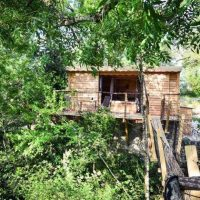Rent treehouses for your next holiday