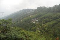 How to Reach Bagdogra to Darjeeling